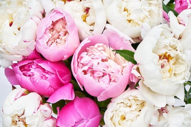 분홍색과 흰색 모란의 꽃다발