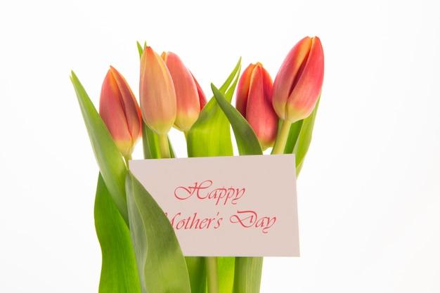 카드에 어머니의 날 메시지와 함께 분홍색과 노란색 튤립 꽃다발