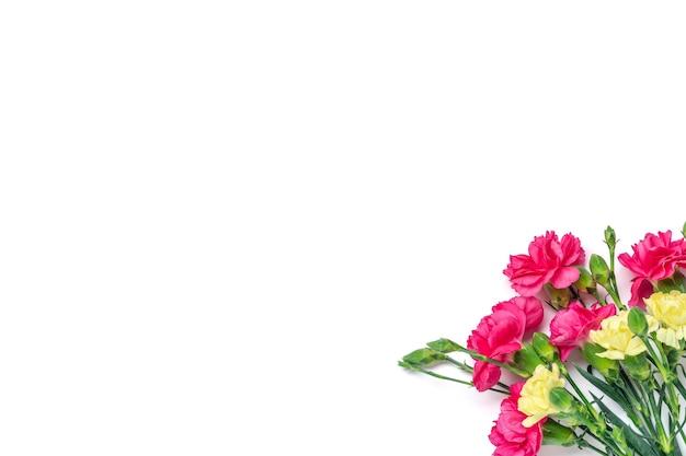 흰색 배경에 고립 된 핑크 카네이션 꽃의 꽃다발 상위 뷰 평면 누워 휴일 카드 3월 8일