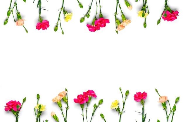 흰색 배경에 고립 된 핑크 카네이션 꽃의 꽃다발