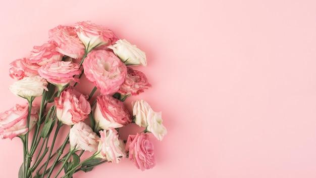 ピンクの背景にピンクのトルコギキョウの花束