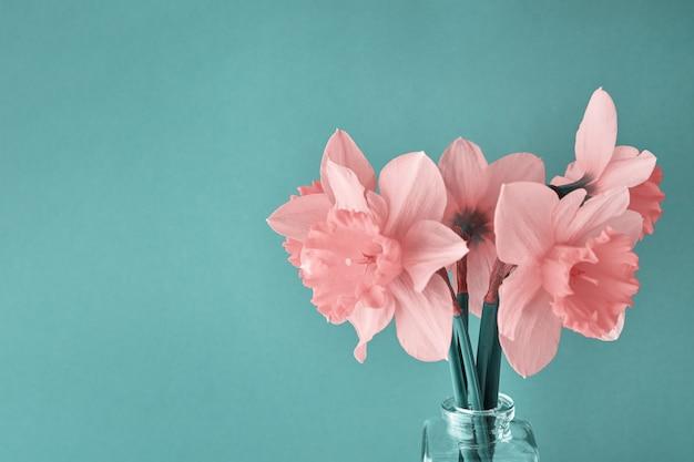 Букет розовых нарциссов в стеклянной вазе на голубом фоне с копией пространства творческие нарциссы крупным планом