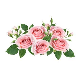 흰 벽에 고립 된 핑크 장미 꽃의 꽃다발. 꽃꽂이를 디자인하십시오.