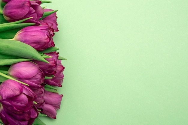 Букет из розовых тюльпанов / пасха день фон. букет из тюльпанов на зеленом фоне, веб-баннер
