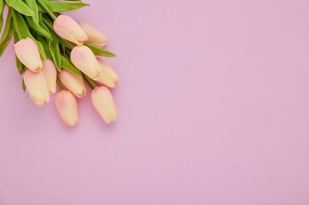 ピンクの背景にピンクのチューリップの花の花束