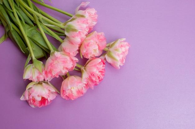紫色の背景にピンクのチューリップの花束
