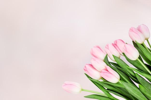 Букет из розовых тюльпанов на абстрактном розовом. вид сверху, копия пространства. праздничный день