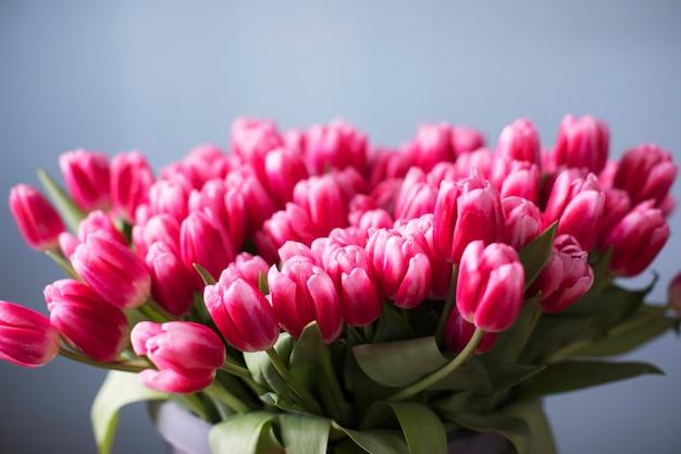 Букет из розовых тюльпанов на нейтральном фоне. цветочный фон.
