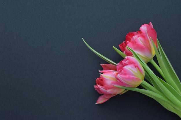 어두운 표면에 녹색 잎 핑크 튤립 꽃다발