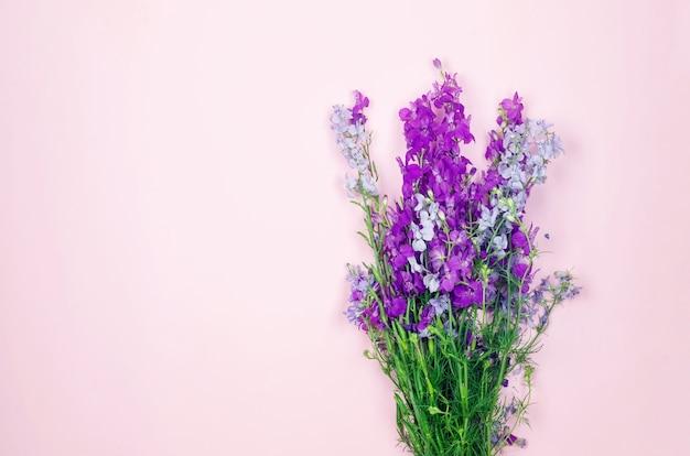 Букет из фиолетовых полевых цветов изолирован