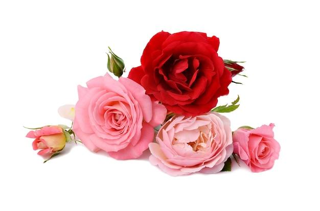 Букет из красных и розовых роз, изолированные на белой поверхности, праздничный букет, крупным планом