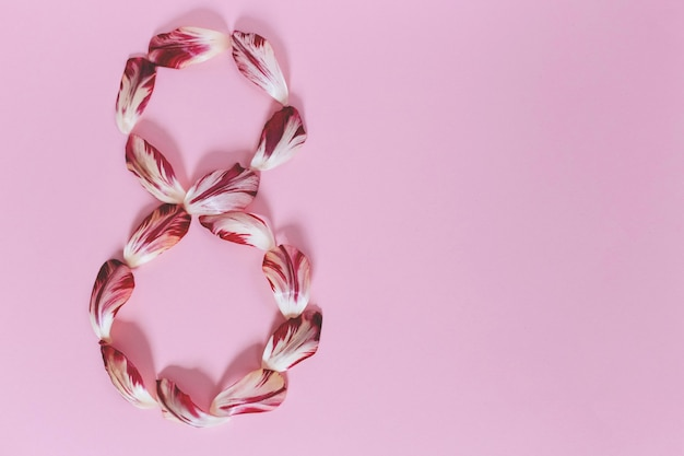 분홍색 벽에 빨간색과 흰색 튤립 꽃다발. 텍스트, 상위 뷰 공간 복사