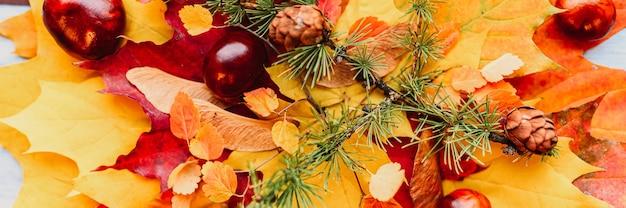 赤と黄色の乾燥した秋のカエデの葉の花束が互いに積み重ねられています