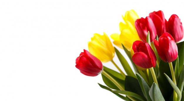 Букет из красных и желтых тюльпанов Premium Фотографии
