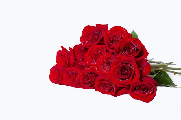 흰색 표면에 빨간색 (부르고뉴) 장미 꽃다발. 물방울. 텍스트를 놓습니다. 확대.