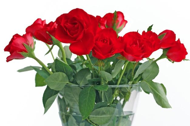 白い背景の上のガラスの花瓶の赤いバラの花束