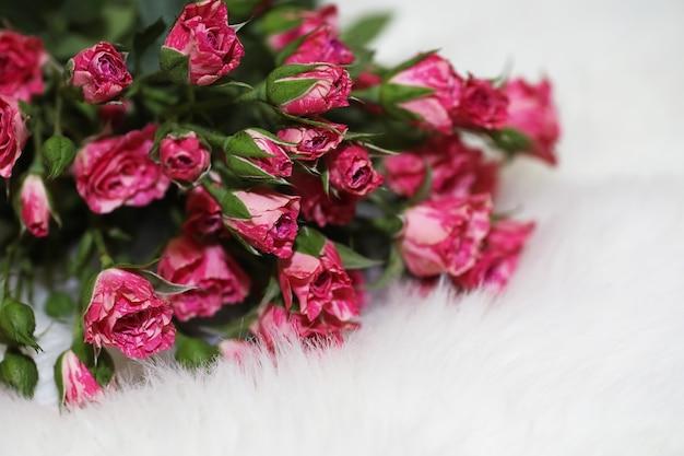 白い背景の上の赤いバラの花束
