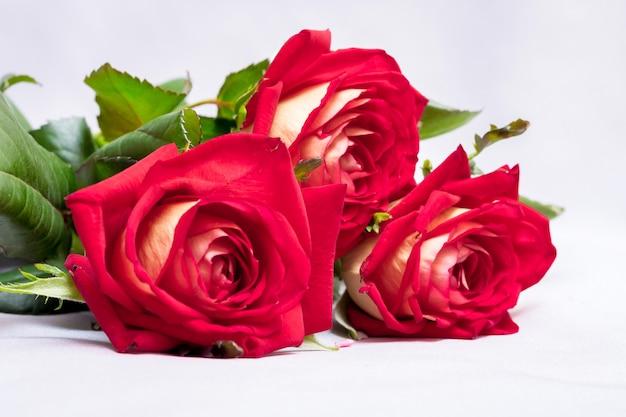결혼식 날 신혼 부부를 맞이하는 빨간 장미 꽃다발. 사랑스러운 소녀를위한 선물