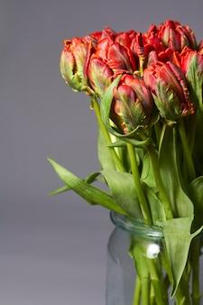 Букет из красных тюльпанов в стеклянной вазе на сером фоне. красивый цветок тюльпанов для красоты и дизайна открытки.