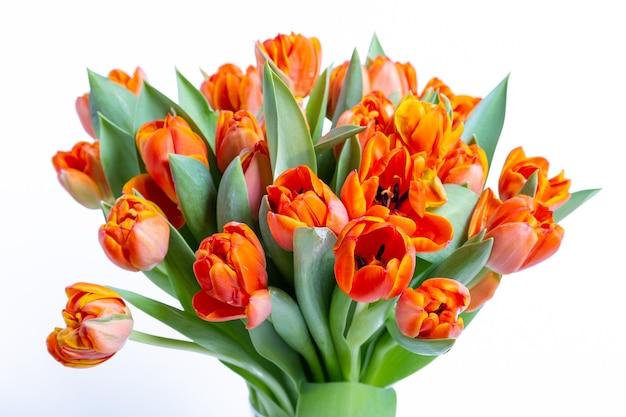 흰색 표면에 빨간색 노란색 튤립 꽃다발