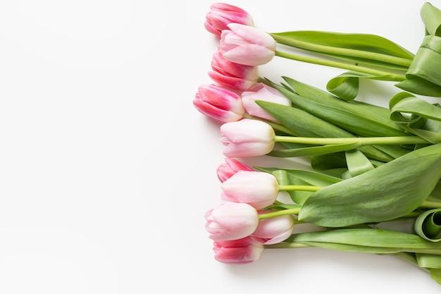 흰색, 봄 인사말 카드 복사 공간에 고립 된 로맨틱 핑크 튤립 꽃다발.