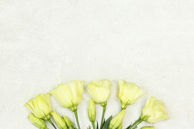 灰色の背景にバラの花束