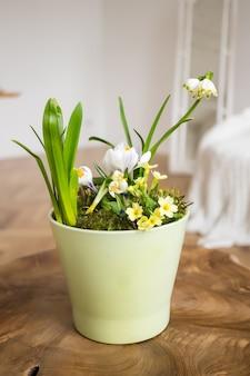 木造のテーブルのスカンジナビアのインテリアの鍋にスノードロップの花束