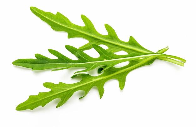 Букет из ростков и листьев зеленой, натуральной, сырой и свежесрезанной рукколы (рукколы), изолированные на белом фоне.