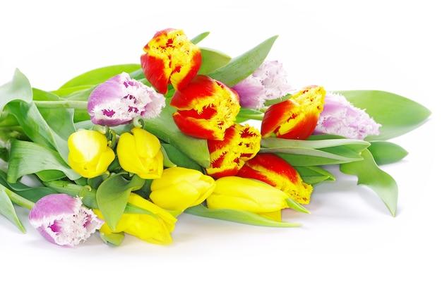 白い背景の上のチューリップの花束