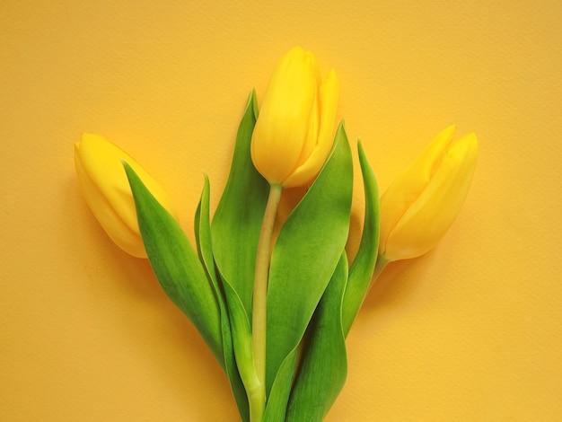 3つの黄色いチューリップの花束