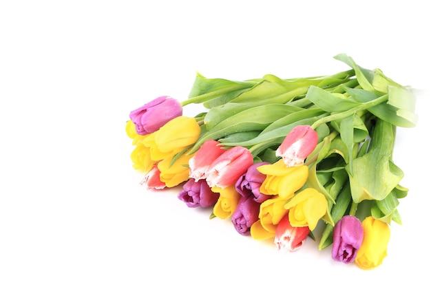 흰색 배경에 고립 된 튤립 꽃다발