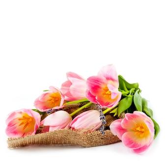 広告のための白い背景の上のチューリップの花束