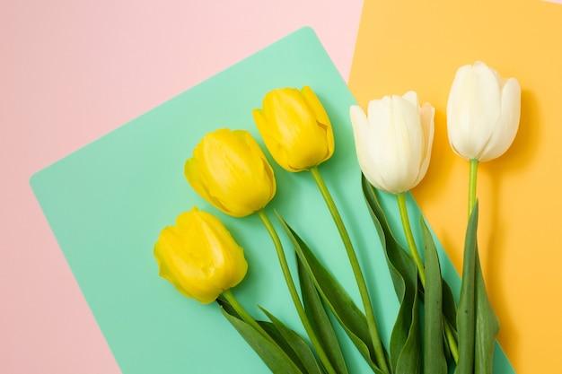 色の背景に白と黄色の春のチューリップの花束。春の花。イースター、バレンタイン、3月8日、お誕生日おめでとう、休日のコンセプト。コピースペース