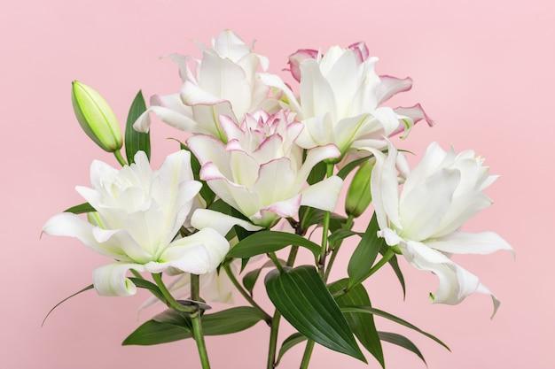 흰 백합 꽃의 꽃다발, 모란 백합을 닫습니다.