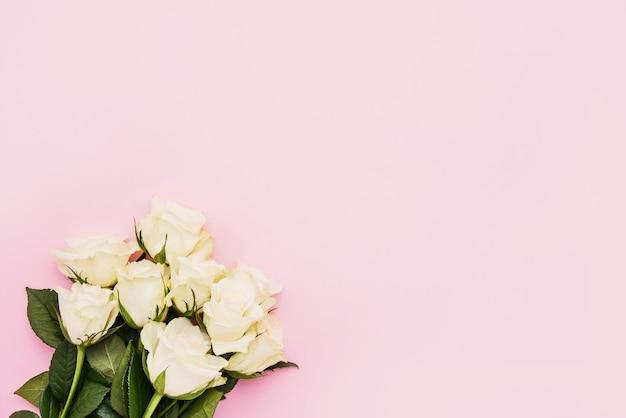 Букет из белых роз на розовом.