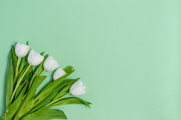 コピースペースと緑の背景に白いチューリップの花束。春のコンセプト、フラットレイ、テキストの場所。バナー。上からの眺め。