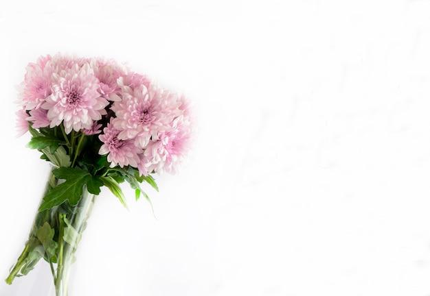 白い背景の上の野生のヒナギクの花束。