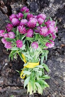 野生の花のクローバーの花束、上面図