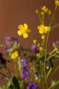 茶色の背景の野生の花の花束癒しの植物コレクション静物構成