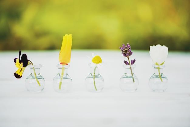 木製の野花の花束。夏の花、白い背景の上のバタニカ。パンジーとカモミール、ジャスミン、ラベンダー、ヘリクリジウムをガラス製フラスコに入れます。