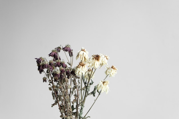 Букет увядших цветов на белой стене