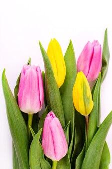 Букет из желтых и розовых тюльпанов на белом фоне с обтравочным контуром. день святого валентина и фон дня матери. вид сверху.