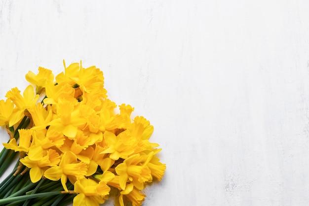 Букет из желтых нарциссов или нарциссов на белой стене. плоская планировка, копирование пространства для текста