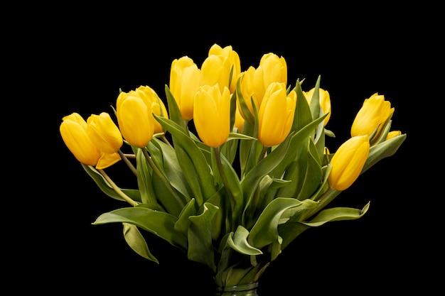Букет из желтых тюльпанов на черном фоне. красивые цветы. садовое растение. 8 марта. качественное фото.