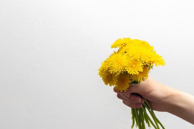 明るい背景、コピースペースに手に黄色の野花タンポポの花束。明るい春の野花。