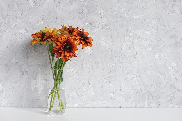 Bouquet of orange flowers coneflowers in vase on table against gray wall. copy space minimal style