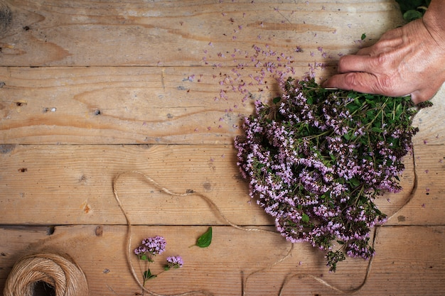 Bouquet of oregano marjoram on a wooden table