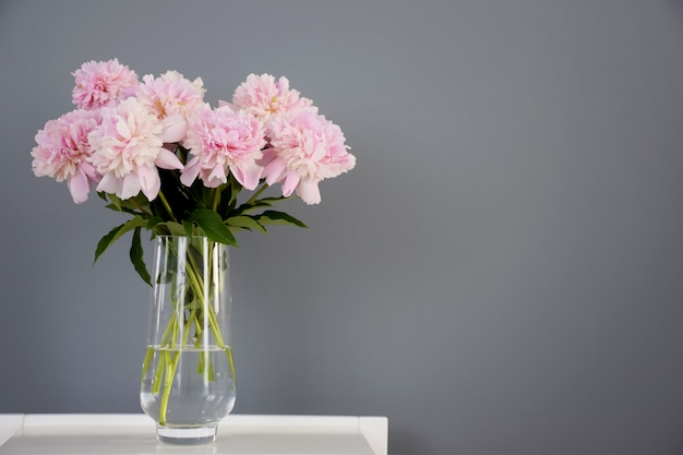 Bouquet of pastel pink peony flowers in bloom in glass vase on white table on gray wall background