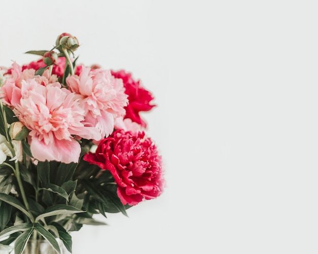 Bouquet of peonies on a white background