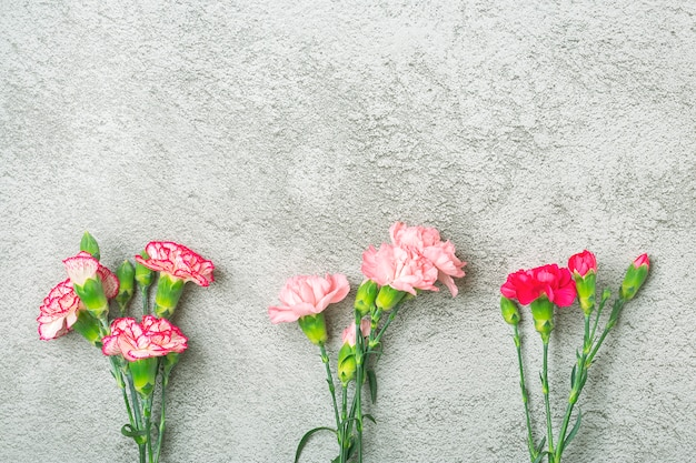 Bouquet of pink carnation flower on gray concrete background top view flat lay